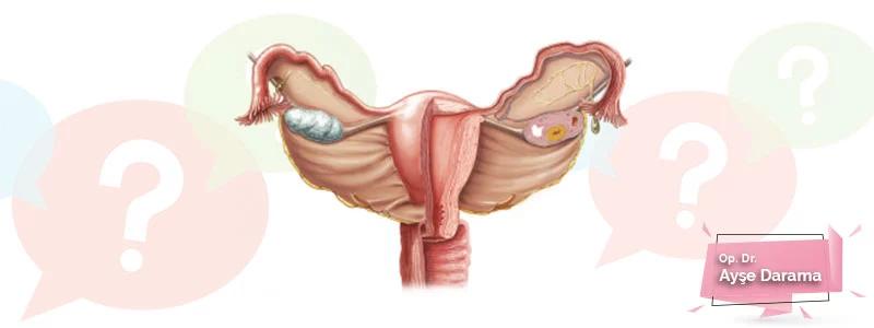Rahim (Uterus) Hastalıkları
